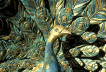 Paradísarfugl